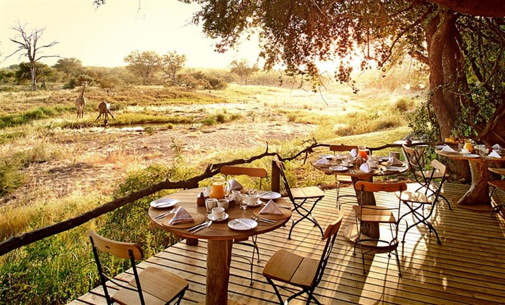 Motswari Safari Lodge