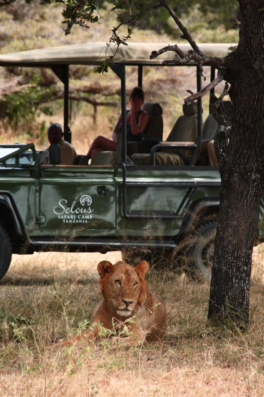Siwandu (previously Selous Safari Camp)