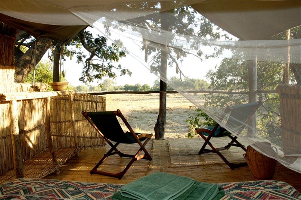 Chikoko Tree Camp