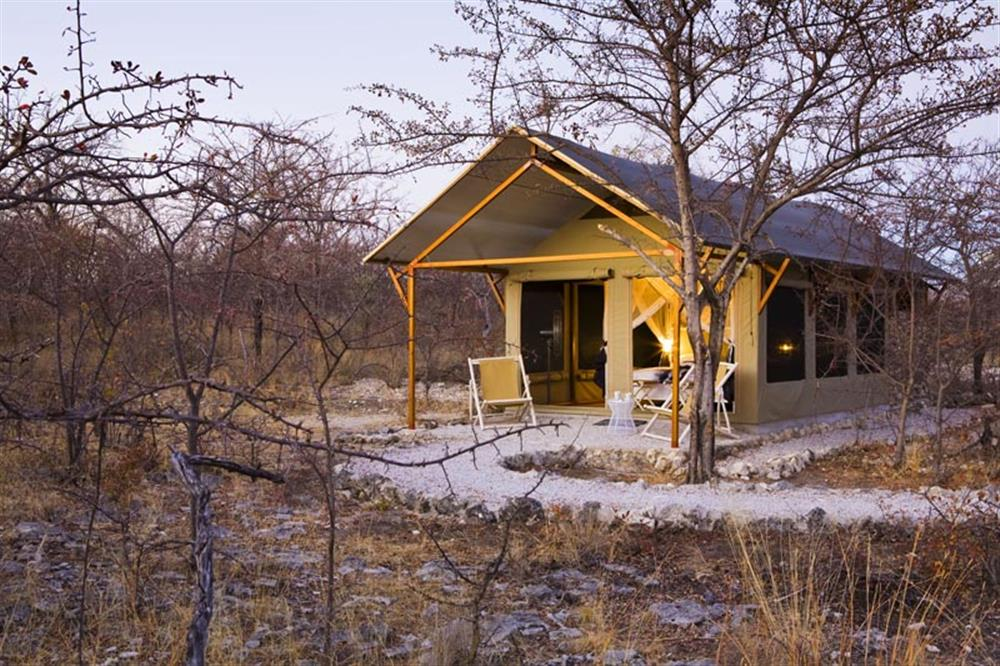 Mushara Bush Camp