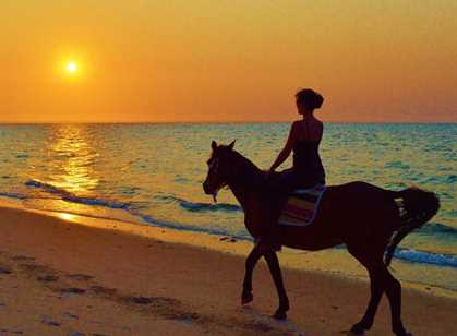 Mozambique Beach & Horse Riding