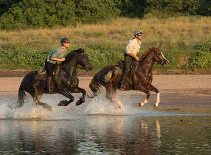 Botswana - Tuli Horse Riding Safari