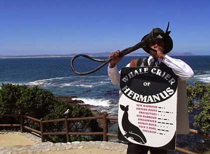 Hermanus & The Overberg